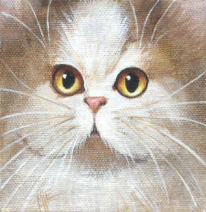 ebay31minipersiancatpainting400.jpg
